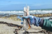 Launching Plastic Free July with WWF South Africa, The Beach Co-op and Twyg magazine