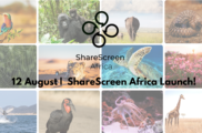 The LCA Launches exciting new knowledge share platform